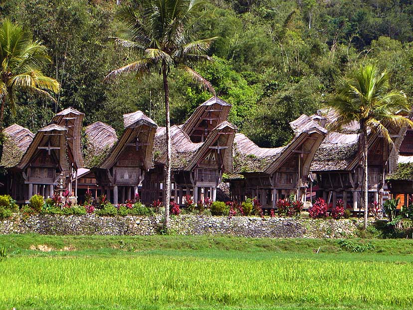 Pic of Tana Toraja
