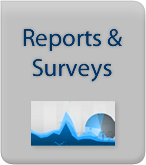Reports and Surveys